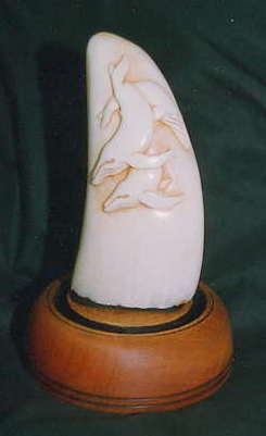 Releif carved Whales Tooth